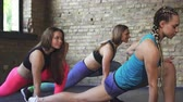 разнообразие : Beautiful young sportswomen exercising at the gym studio stretching their bodies together. Attractive fitness females working out. Physique, wellness, determination concept.