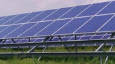 renewable : Blue cell solar panels green energy generation on grass at windy day. Eco power from photovoltaic modules generating electricity and foliage. Alternative electricity source on plant field. Renewable