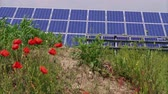 photovoltaic : Photovoltaic power station with cell panels generating green energy on grass and poppy flowers at windy day. Solar park. Eco power from PV modules producing electricity. Solar cells, renewable energy