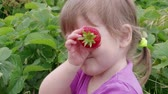 Happy little girl covering eyes with ripe red garden strawberry in green leaves, handheld shot. Child having fun with berries instead of eyeballs. Kid holding fruit at eyes level at summer day on farm
