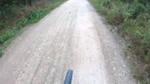 bisiklete binme : Riding bicycle on forest lane. Fore wheel of moving cycle on pea grit path and road, view from top. Wheel of moving cycle. Sport, healthy lifestyle, ecology, green travel concept. Biking on rural road Stok Video