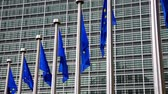 увеличение : European Union flags against the European Parliament building
