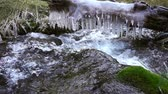 icicle : Frozen stream with ice. Autumn river and icicle. Cold water flows under icicle.Slowmotion 240 FPS