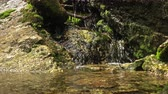 flowing water : a small mountain stream flows through the rocks Stock Footage