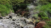 yellowstone : White vapor rises above the hot springs on the slope of the volcano. Kuril Islands, Itutrup Island, Baranskiy Volcano