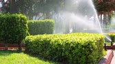 vlhkost : Watering the lawn in the spray of an automatic irrigation system