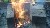 alicate : village blacksmith puts the iron workpiece in burning coals for heating Stock Footage