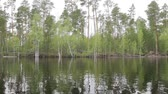 переполнение : Yugra, spring flood on the taiga river. The camera moves along the shore