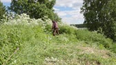 nettle : The farmer harvests the beveled grass for the livestock feed Stock Footage
