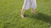 Closeup shot of cute baby boy making first steps on grass at garden Stock Footage