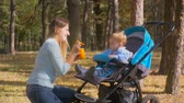 pram : Beautiful young mother feeding her baby son sitting in pram at autumn park Stock Footage
