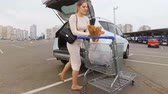 shopping bag sale : Beautiful young housewife loading car trunk at supermarket