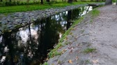 4k video of camera moving along beautiful canal in the autumn park