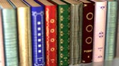 archief : A stack of old books. Camera movement along an endless shelf of books. Looped 4K animation.
