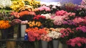 madeira : Different types of flowers in the store. Stock Footage