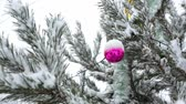 bombki : Festive decorations hang on the snow-covered branches of a Christmas tree, which stands on the street. Happy new year and merry christmas