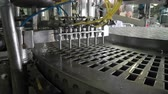 hosepipe : The conveyor automatic lines for the production of ice cream Stock Footage