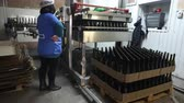 carregador : Sennoy, Russian Federation – February 14, 2018: Feeding bottles to the conveyor for further bottling of wine