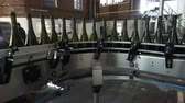 blockage : Sennoy, Russian Federation – February 14, 2018: Bottling and sealing conveyor line at winery factory