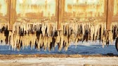dreadful : Old rusty train wagons with stalactites of salt at the lake