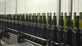 videira : Bottling and sealing conveyor line at winery factory Stock Footage