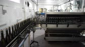 Bottling and sealing conveyor line at winery factory Stockvideo