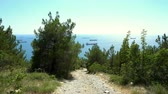 Hiking down the mountain on a rocky path to the sea through a pine forest