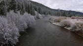 first : Idaho Landscape First snow on a Autumn Leaves Easley Creek Sun Valley near Ketchum Stock Footage