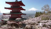 Mt. Fuji over the Chureito Pagoda on a Lovely Spring Day