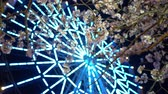 Япония : Cherry Blossoms with a Defocused Ferris Wheel at Night