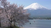 five : Mt. Fuji over Lake Kawaguchi and Cherry Blossoms Stock Footage