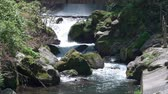 Banjo Waterfall in Izu Peninsula (slo-motilt up)