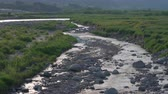 Япония : Water Flowing in kamaishi River, Yamanashi Prefecture, Japan Стоковые видеозаписи