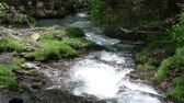 late spring : Stream Flowing Down a Mountain (Slow Motion) Stock Footage