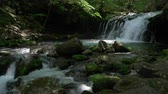 late spring : Waterfall in a Mountain Forest Captured on a Sunny Spring Day (slow motion):Tateshina Ootaki Falls in Nagano Prefecture, J APAN