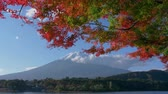 beş : Mt. Fuji with Maple Leaves