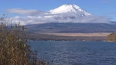 スワン : Mt. Fuji over Lake Yamanaka with Swans (real timetilt down)