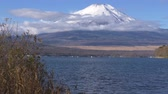 スワン : Mt. Fuji over Lake Yamanaka with Swans (real timetilt up)