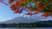 пять : Mt. Fuji with a Colorful Maple Tree at Lake Kawaguchi