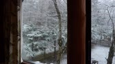 kurtyna : Snowing in a Forest Seen from a Country House (Super Slow Motion) Wideo