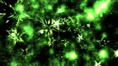 celebration : Abstract Star Shapes, Space - Loop Green Stock Footage