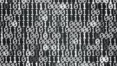 interrupteur : Binary Code Display Wall Animation - Loop Monochrome