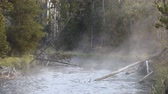Steam rises of the flowing Gibbon River in Yellowstone National Park on a cool, bright morning in late summer.