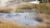 Two scenes one of a fumarole surrounded by grasses and the other a hot spring with low water.  West Thumb Geyser Basin, Yellowstone National Park. Dostupné videozáznamy