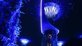 SINGAPORE - OCT 21, 2017: Fantastic night view of Supertree Grove of Gardens by the Bay. Giant futuristic super trees illuminated in dark sky by blue light. Popular touristic landmark zoom out video