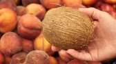 pêssego : Coconut in a female hand against a background of fresh peaches Vídeos