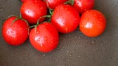 alimentos : Red tomatoes with water drops Stock Footage