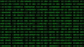 numerais : Green binary digital code with randomly changing zeros and ones. Binary code animation