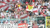arsenal : Soccer fans celebrate at the stadium Stock Footage