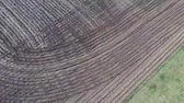 milharal : Aerial view flyover agriculture fields and farmland in Illinois corn belt - Midwest America